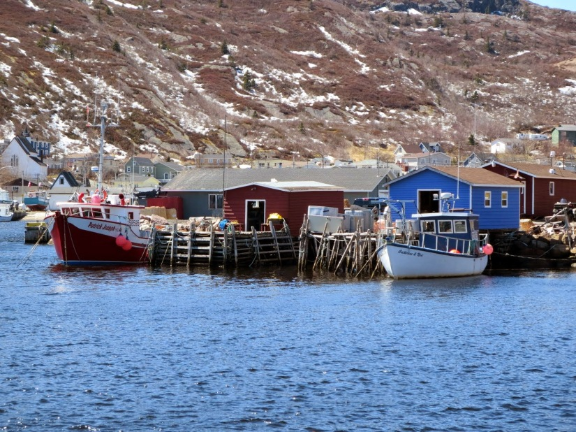 fishing-pettyharbour